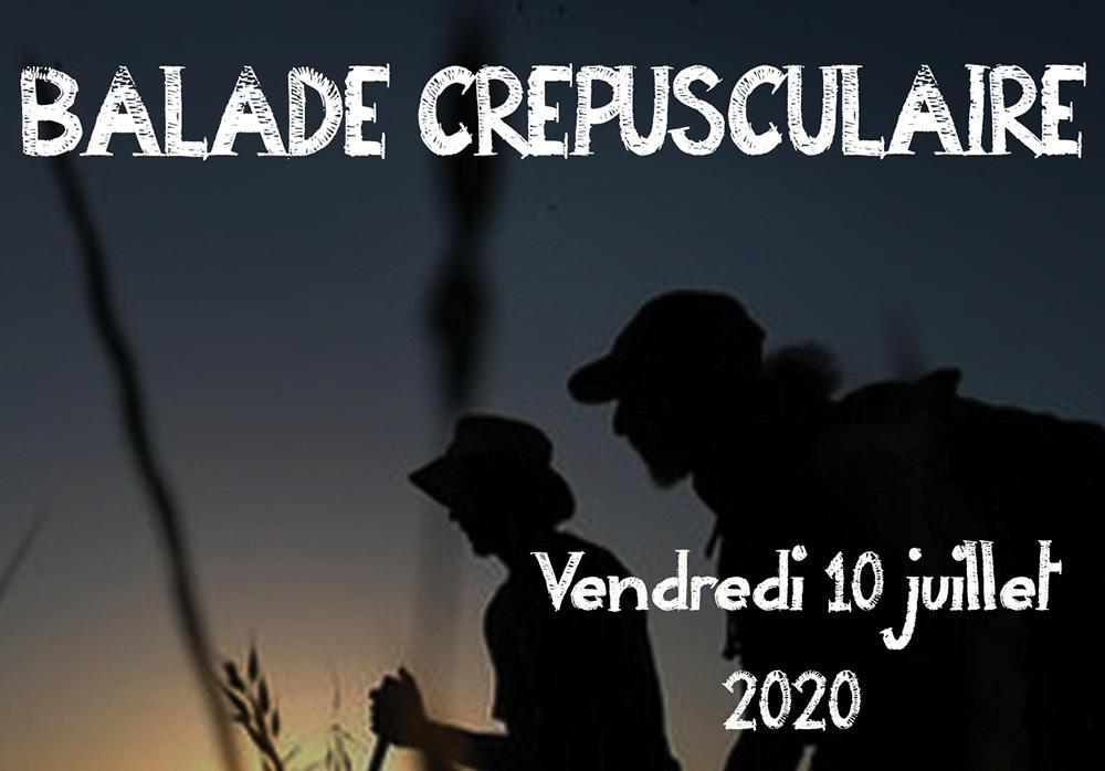 Sortie nature nocturne 2020 < Neuville-sur-Ailette < Aisne < Picardie