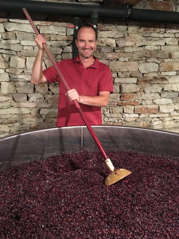 Saint-Martin-sous-Montaigu---Domaine-Virot---Vins---Degustation---Domaine---Oenotourisme---2019---Photo-pour-guide-4