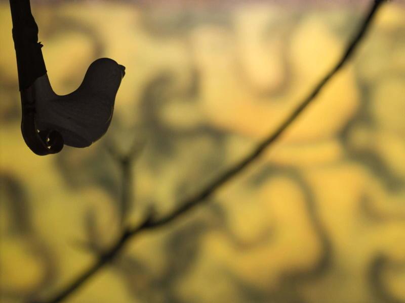 Balade contée L'homme qui faisait chanter les arbres ©Michel Menguy