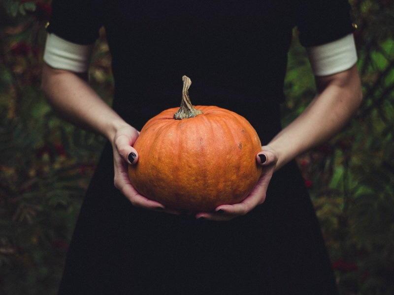 pumpkin-1838545_1280 (1)