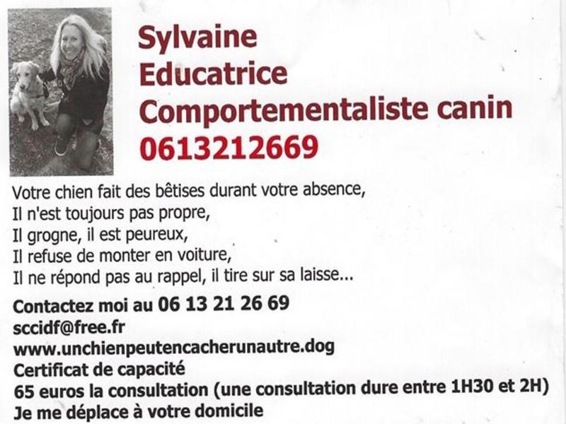 Sylvaine - educatrice comportementaliste canin