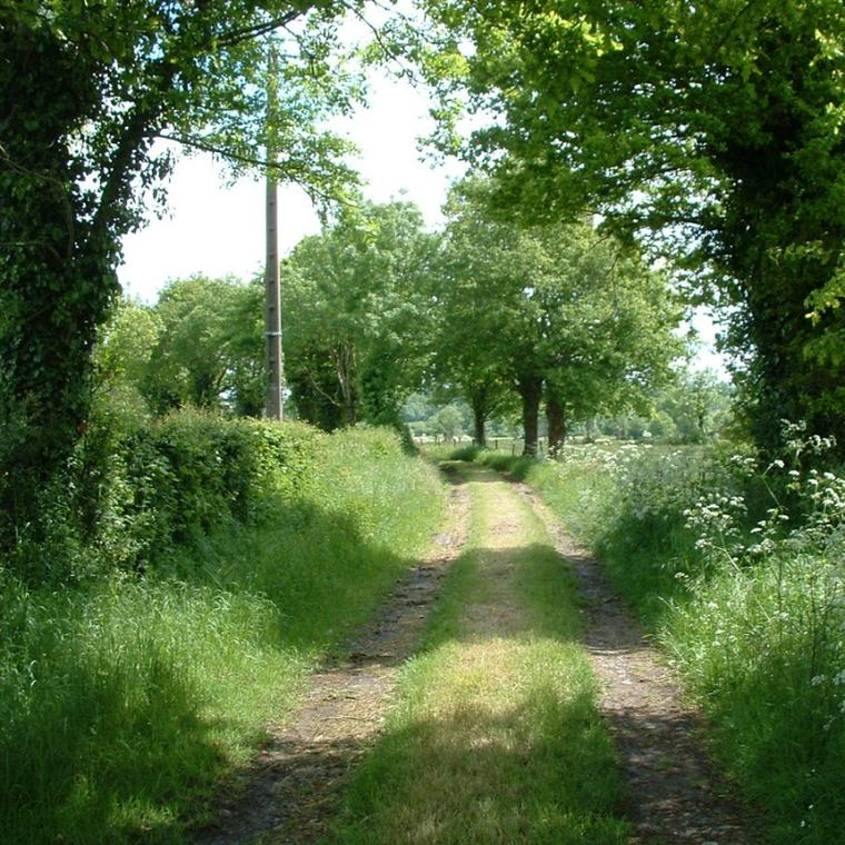 la-ronde-chemin-des-ecoliers-rando-pedestre.jpg_1