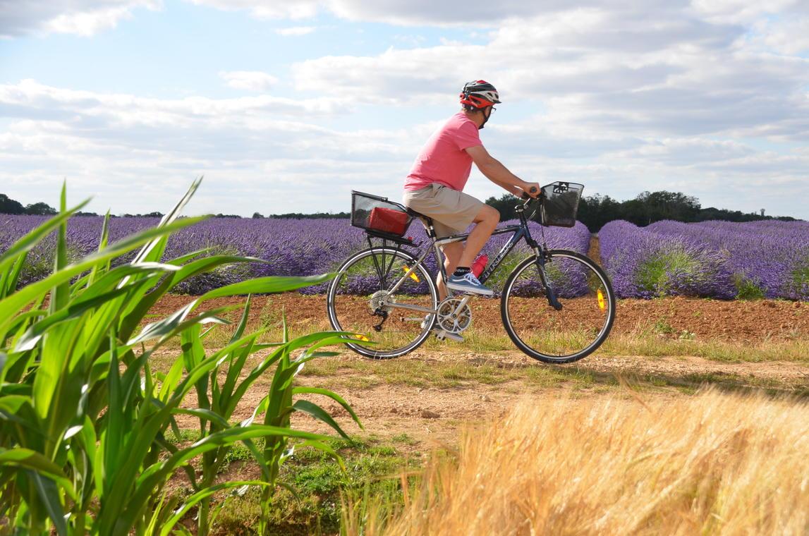 Vélo autour de Châteaudun