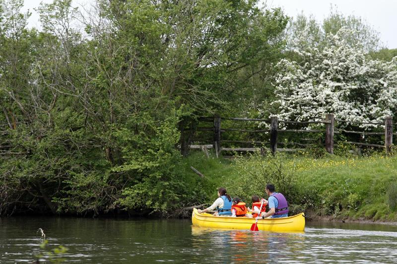 Découverte naturaliste de l'Huisne en canoë
