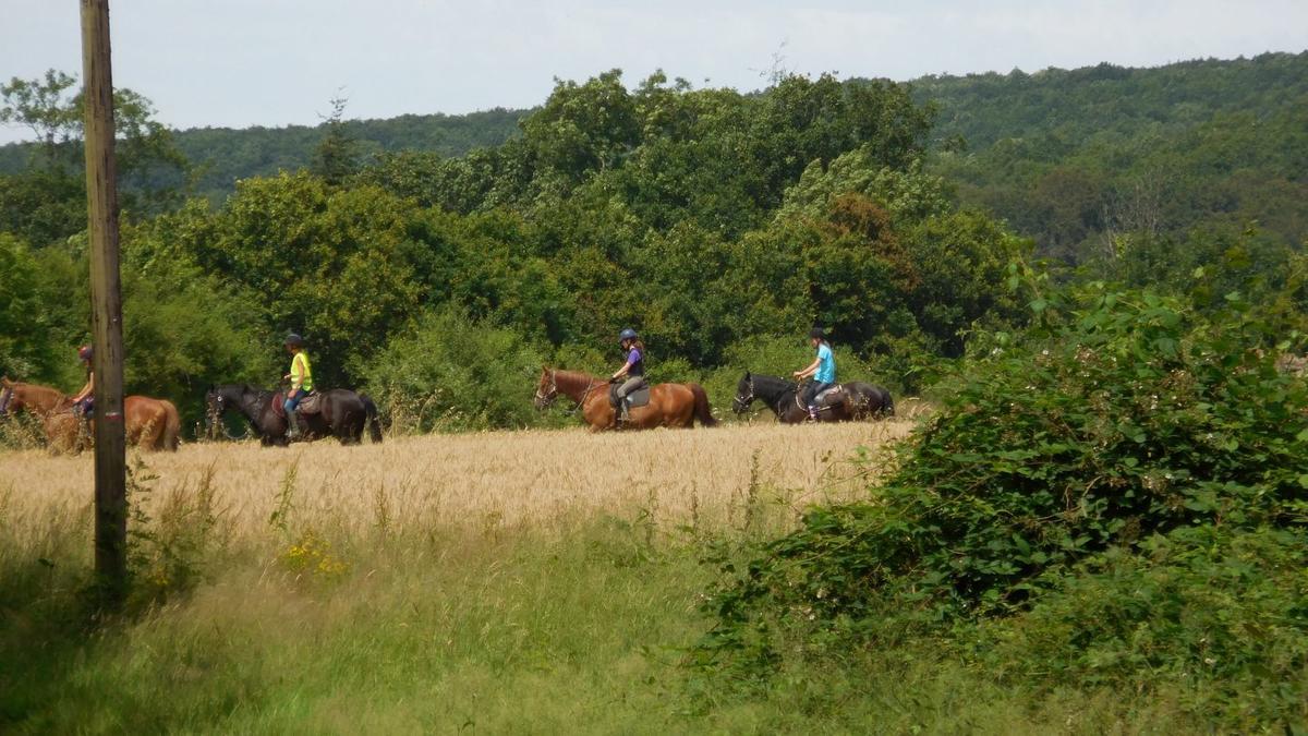 Ferme-equestre-de-Montecot