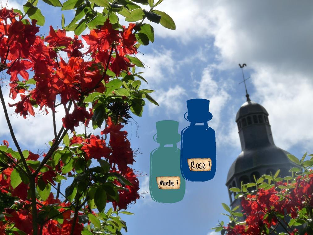 Jeu-parfums