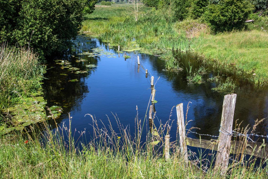 Sentier Nature de Douy