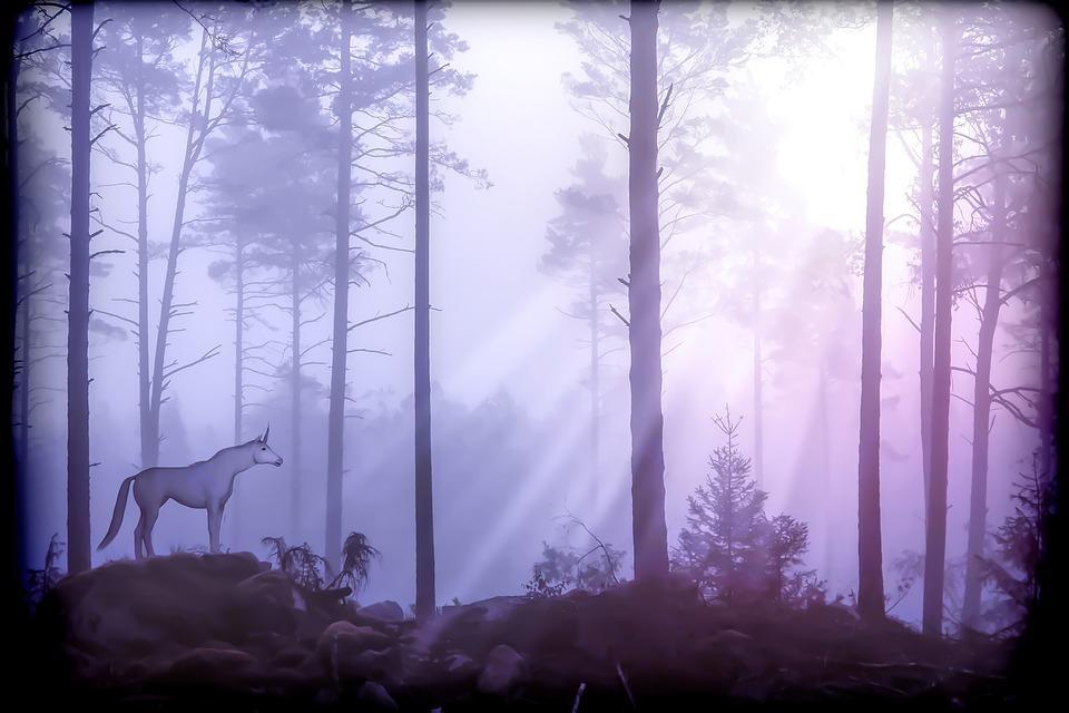 unicorn-2863384_960_720