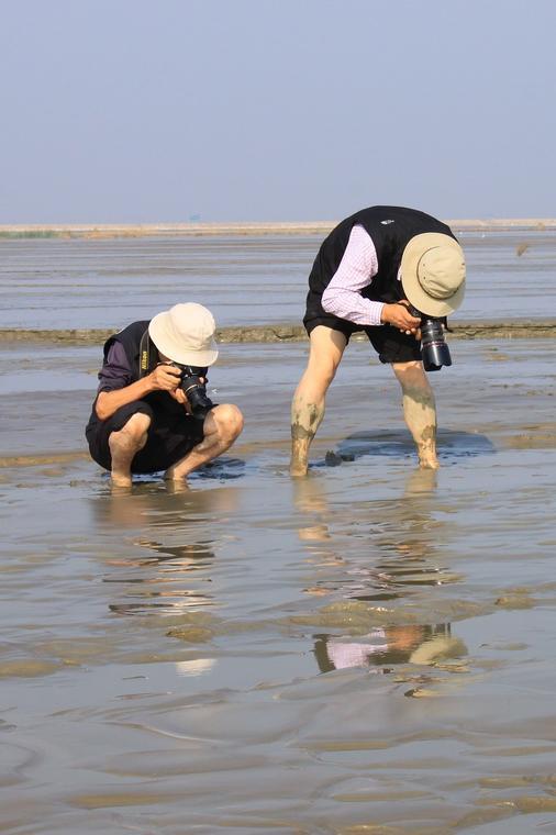 Atelier marée basse - Loctudy - Pays Bigouden