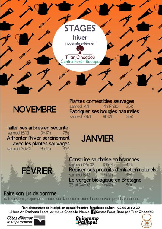 affiche stage hiver CFB