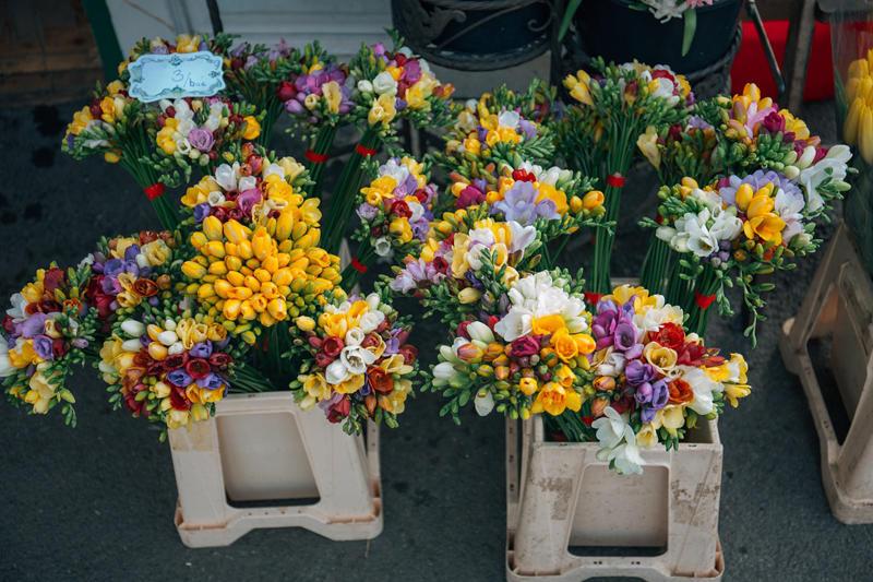 Fleuriste l'Orchidée - Guilvinec - Pays Bigouden