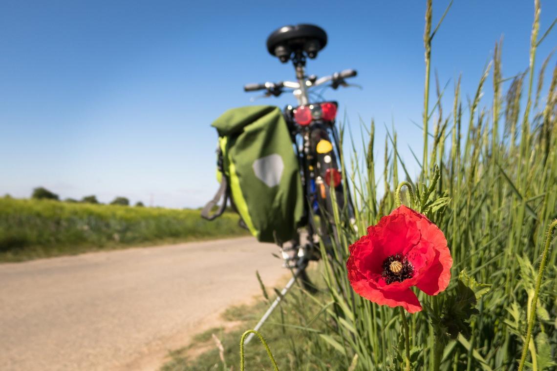 Balade vélo guidée-Landudec-Pays Bigouden