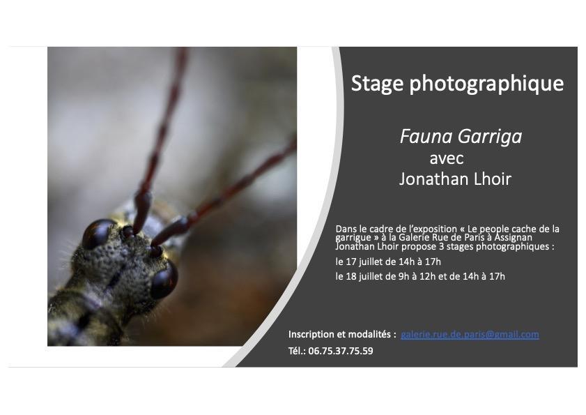 Affiche stage Jonathan Lhoir