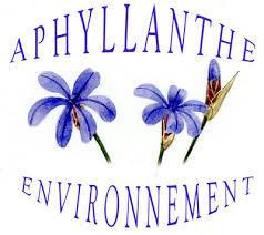 Aphylante environnement