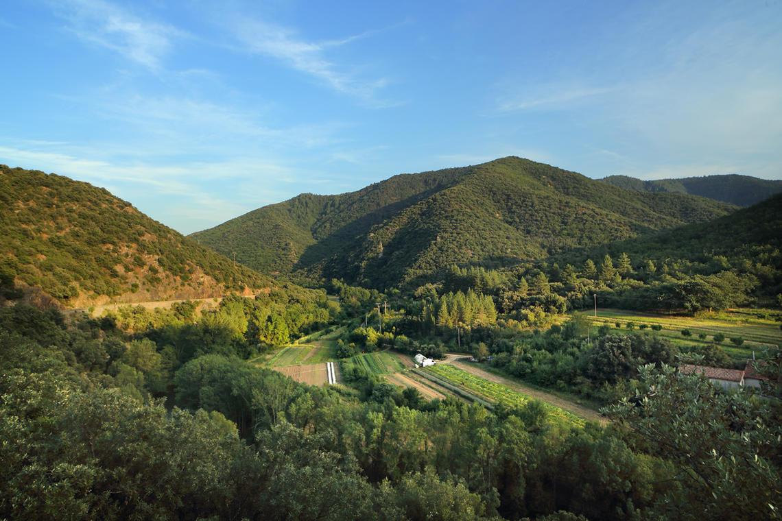 La haute vallée de l'Orb entre Sérieys et Truscas