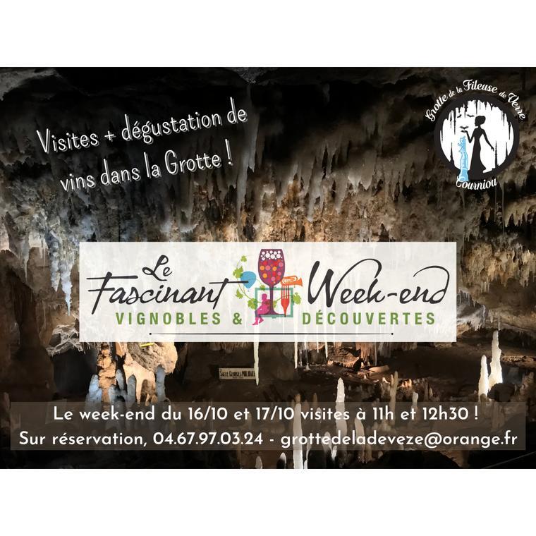 Visite + dégustation de vin