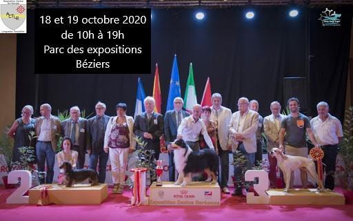 2020-10-18 Concours canin Parc expo Béziers