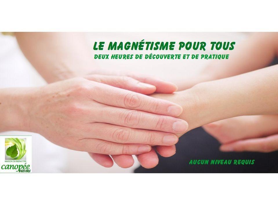 2020-11-12 Atelier magnétisme Béziers Maison Canopée