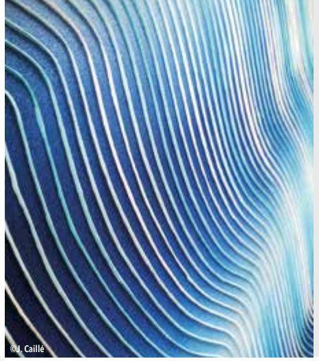 J Caillé les ondes bleues