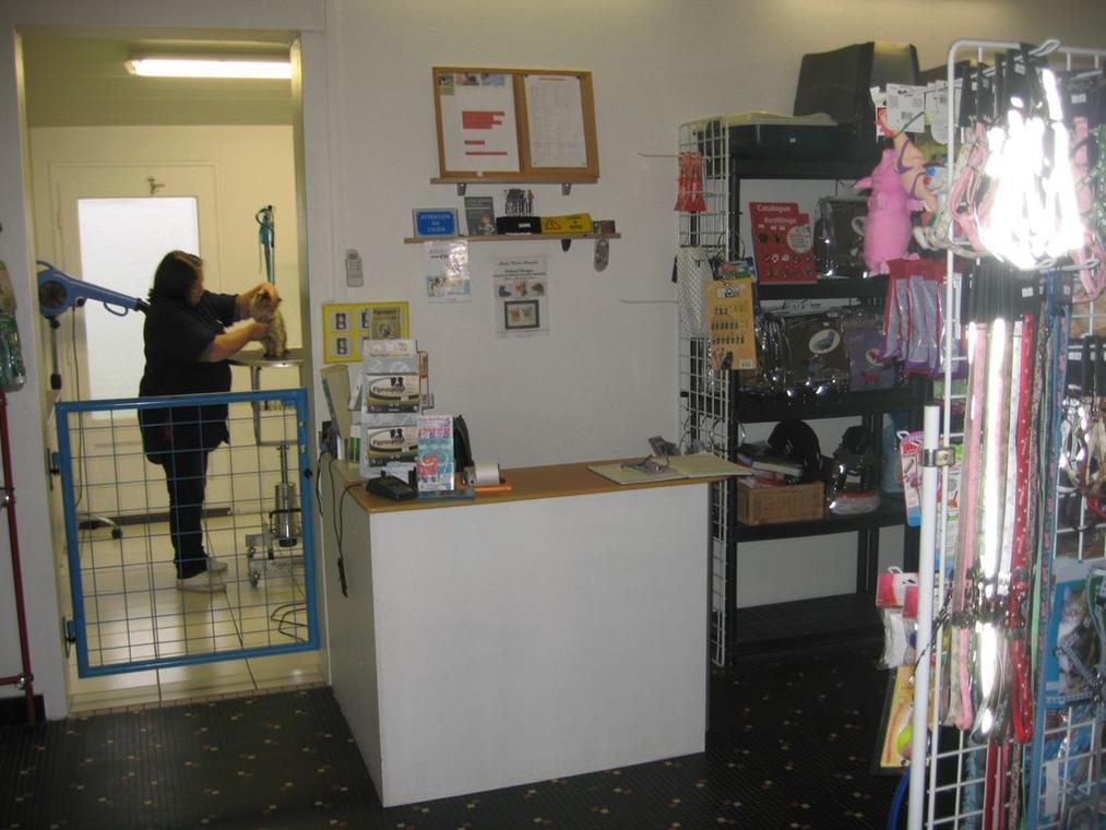 commerces-toilettage-bokbo-latranchesurmer-85