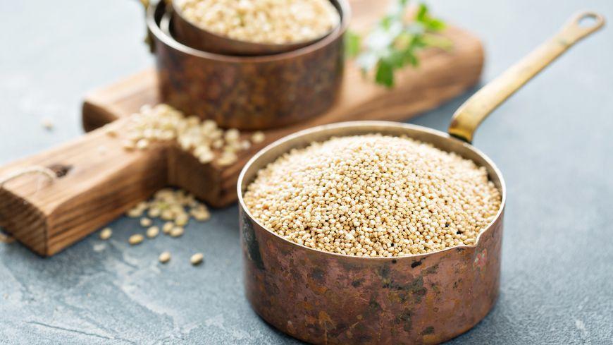 ''quinoa'' -c-fahrwasser