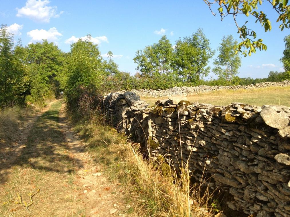 Chemin et Muret