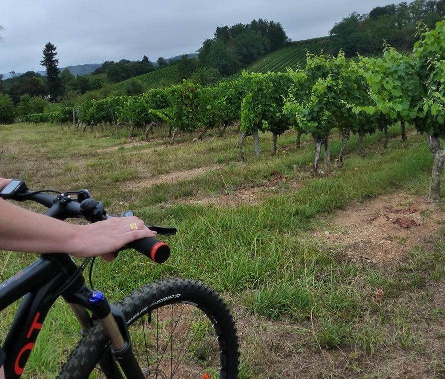 181106_COM_Cyclo_FMA_©Office de Tourisme Lot-Vignoble