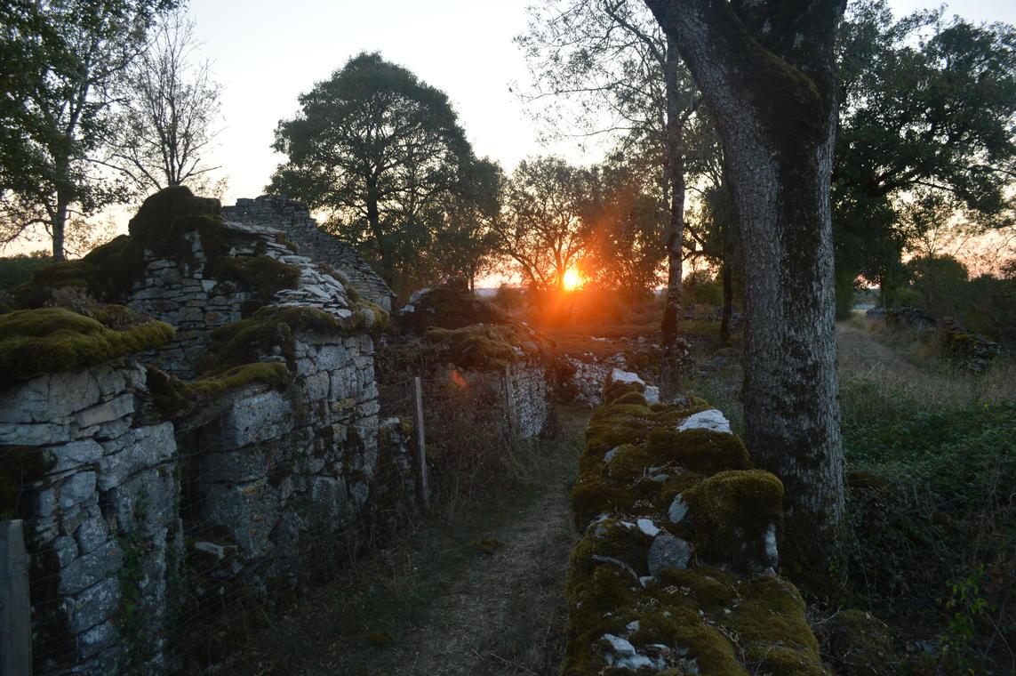 1juin_Barrière coucher_soleil_P.Florez