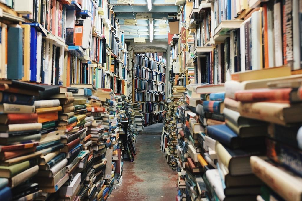 vide bibliotheque livres