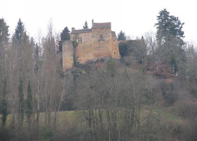 Chateau-du-Theron©Michel Salaün