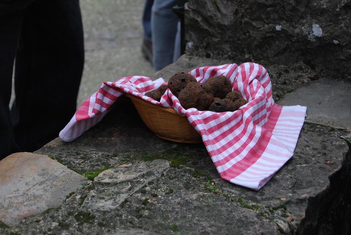 Marché aux truffes d'hiver de Limogne