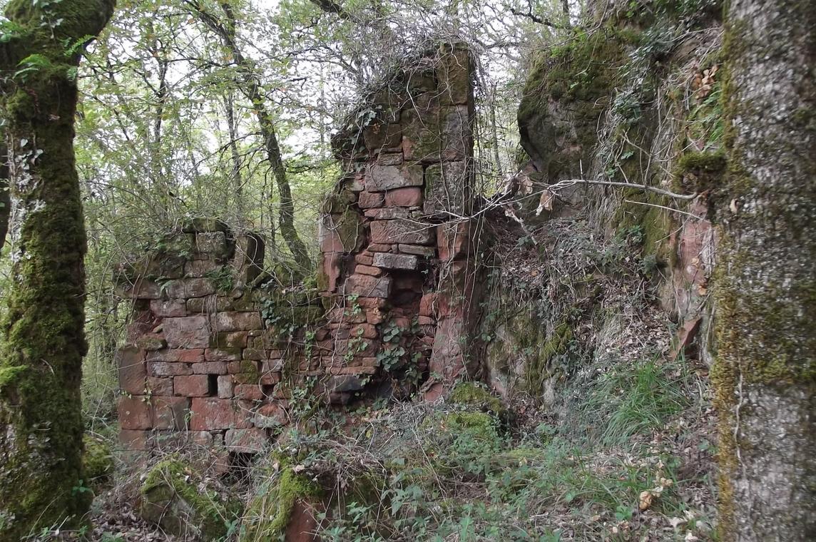 Maison en ruine dans les bois