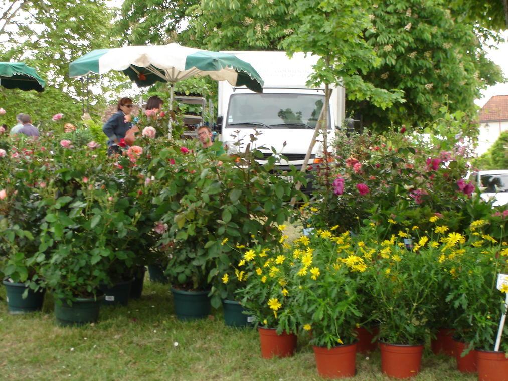 Marché aux fleurs 2011 002
