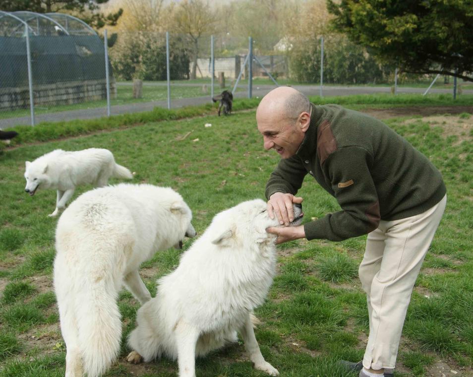 Pierre Cadéac et ses loups-comp