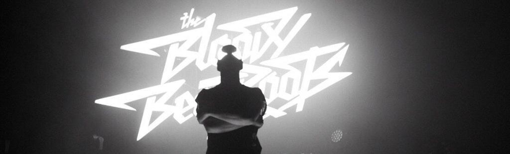 The Bloody Beetroots LiveOK