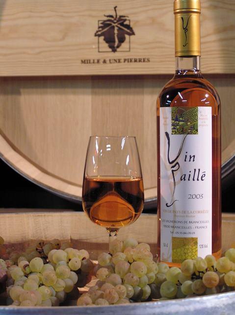 a_cave viticole de branceilles OK