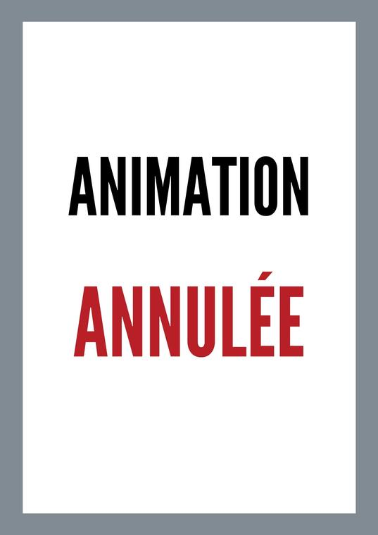Animation-annulee-6c1a8b9602be4e52a6a080dad476063c