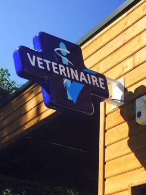 CASTETS - Clinique Vétérinaire Adhocvet