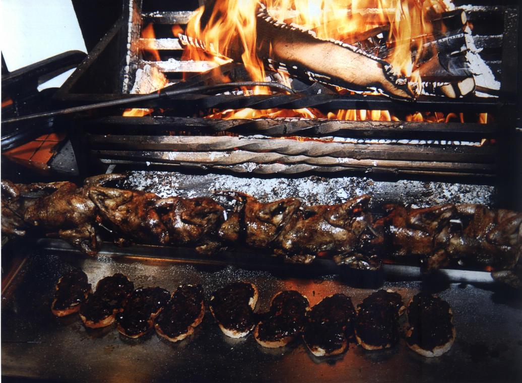 Feu cheminée avec palombes