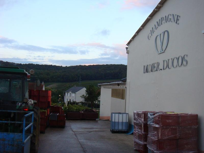 Champagne Didier Ducos - St Martin d'Ablois
