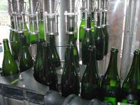 Champagne Petitjean Pienne - Cramant