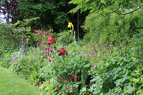 Un jardin pour tous les sens - 1 - Ceffonds