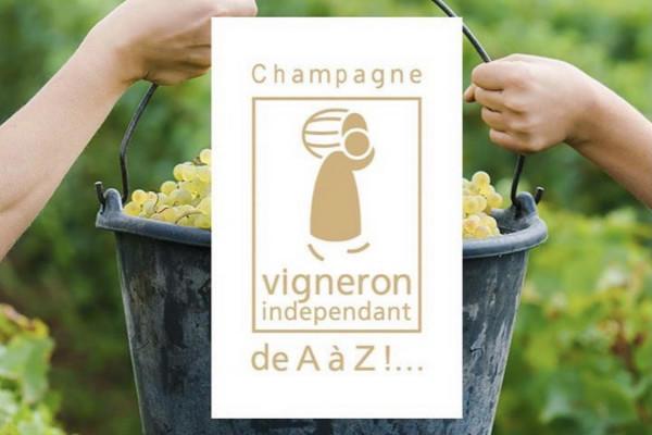 devenez-vendangeur-dun-jour-au-champagne-pierre-pinard-36b73
