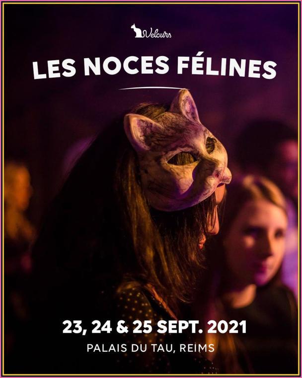 les noces felines 2021