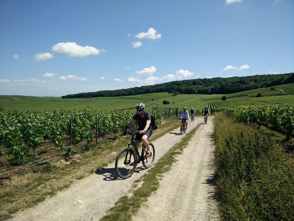 velo-sacre-wine-tour-3-2