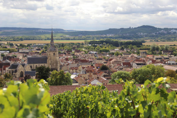 visite-guide-da-champagne-groupes-30687