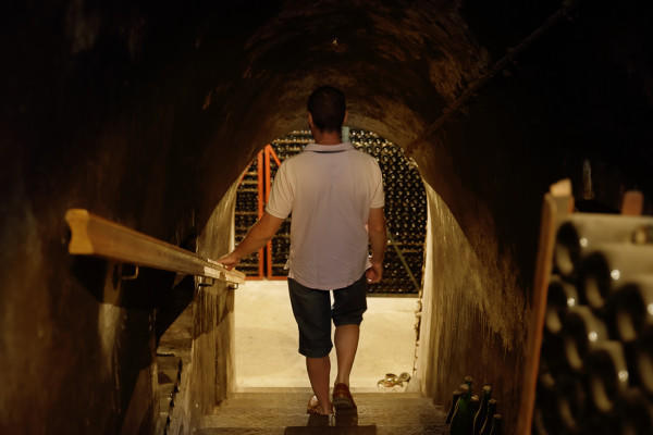 visite-immersion-champagne-alfred-tritant-1