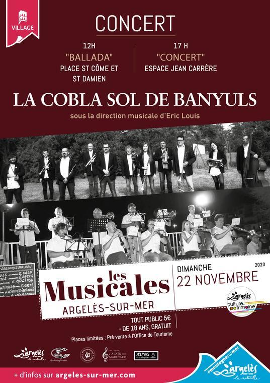 Affiche Musicales - Novembre 2020