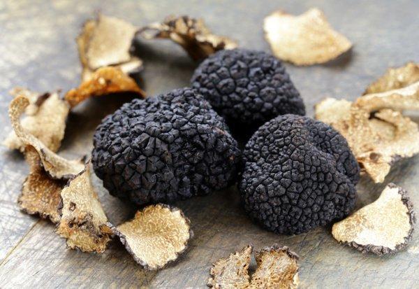 depositphotos_54824145-stock-photo-expensive-rare-black-truffle-mushroom