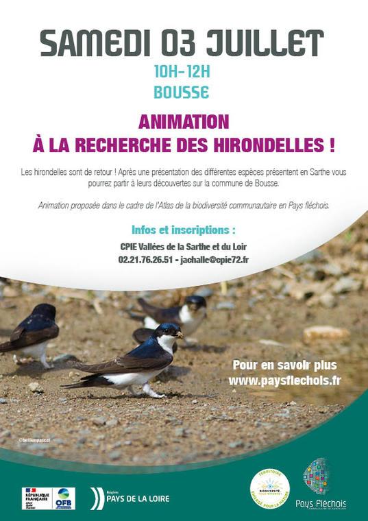 Affiche 03 - Hirondelles